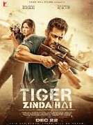 poster of tiger zinda hai